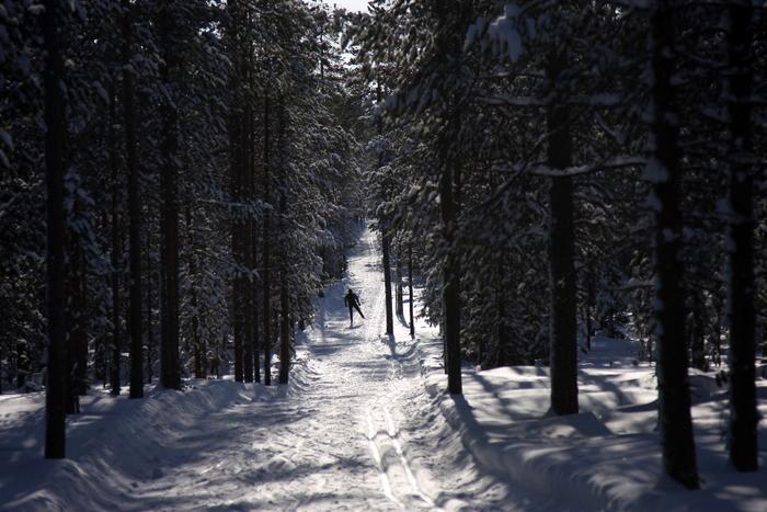 Distanču slēpošana Lapzeme