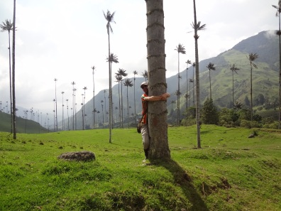 15 Kolumbija DA Valle de Cocora (10)